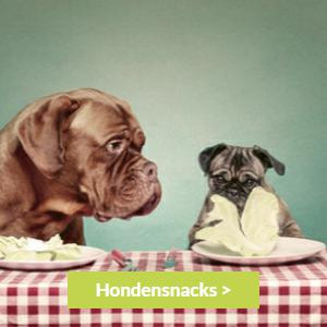 Hondensnacks